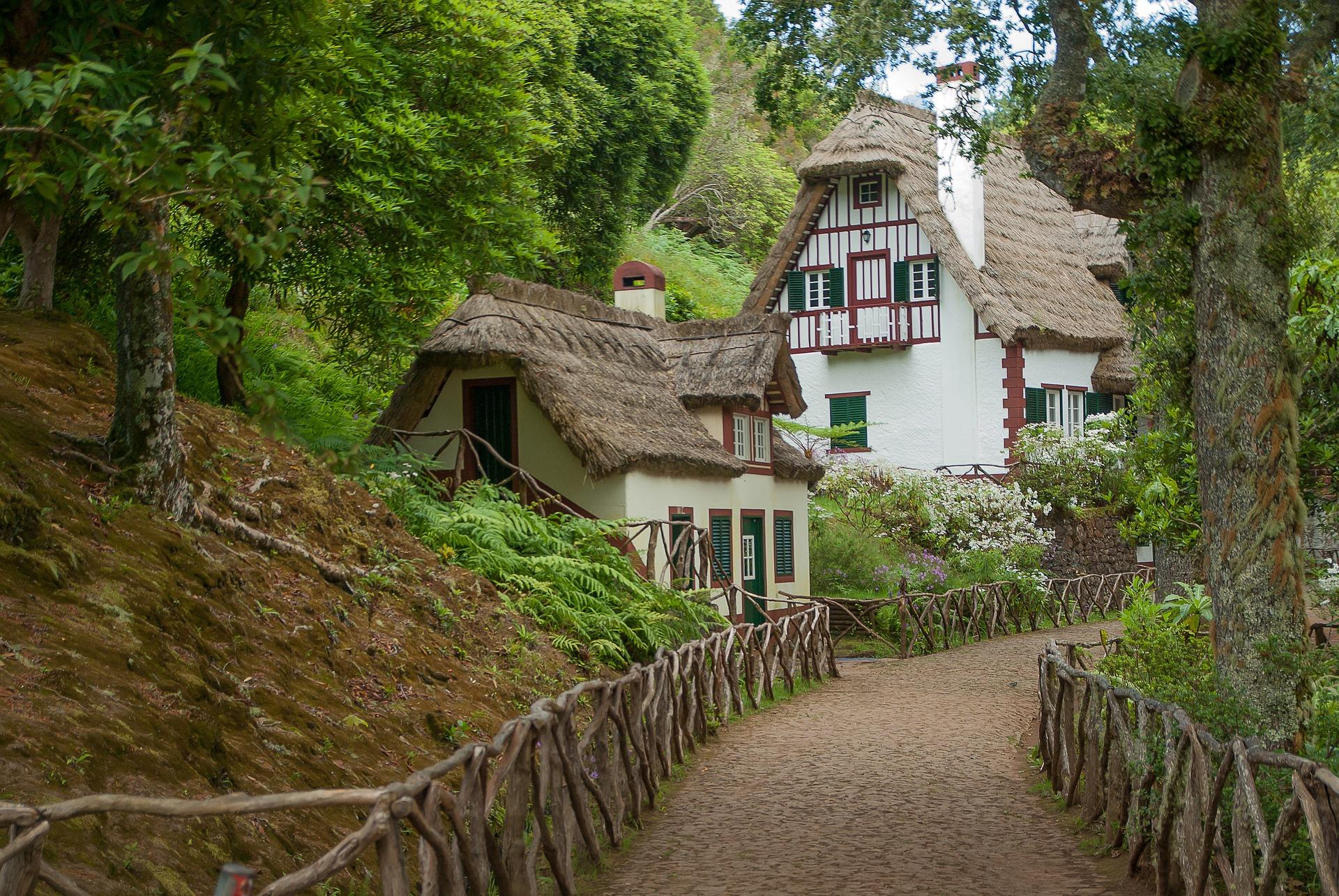 dům v lese